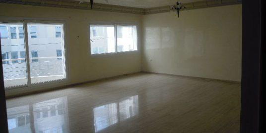 Appartement avec terrasse à louer vide à Gauthier