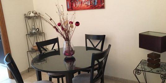 Spacieux studio à louer meublé à Gauthier