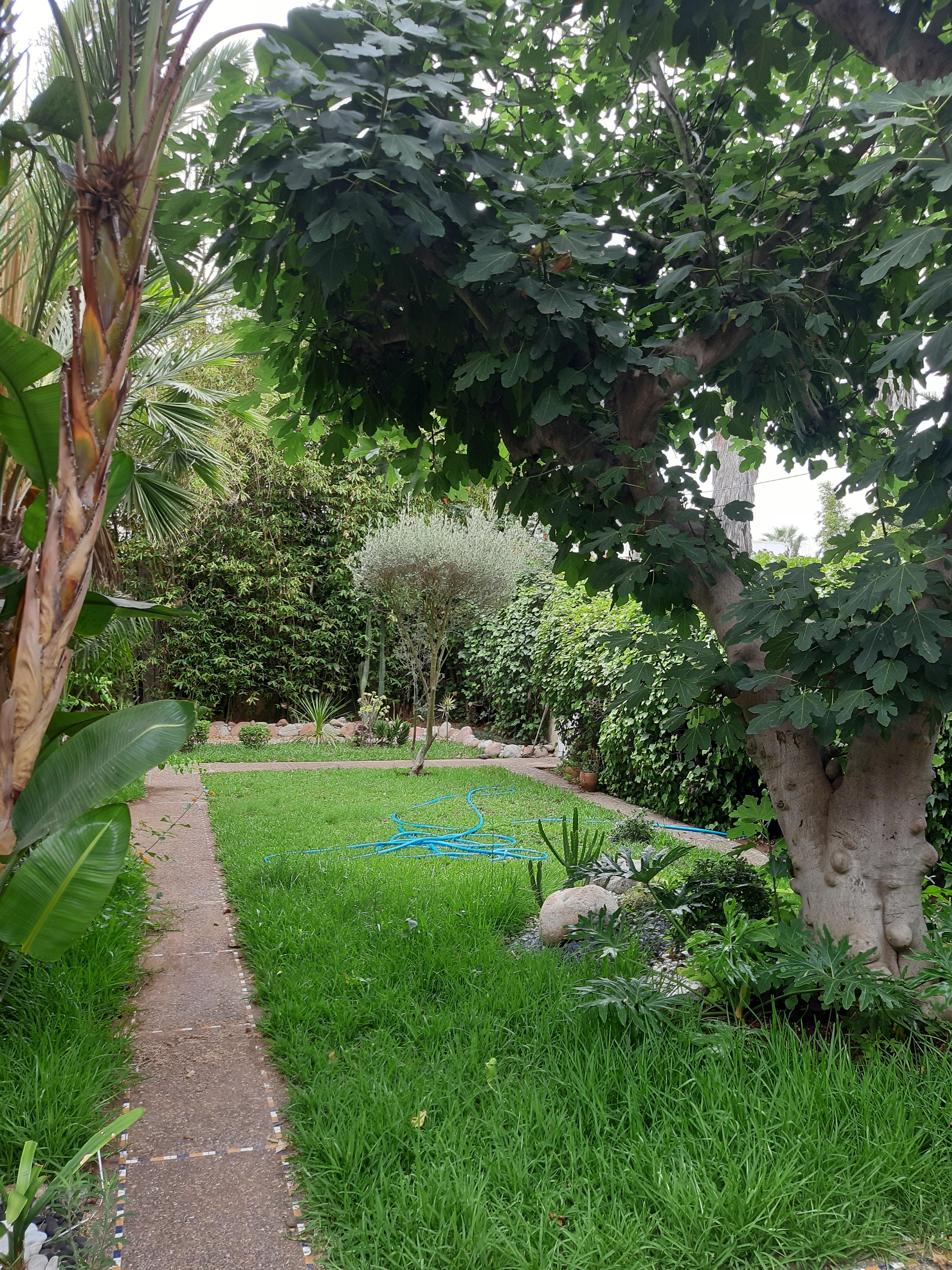 Location <strong>Villa</strong> Casablanca Chantilly <strong>700 m2</strong>